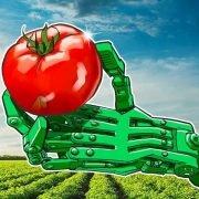 استفاده از بلاک چین در تولیدات کشاورزی