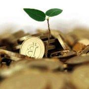 سرمایه گذاری در دنیای کریپتوکارنسی یا ارز دیجیتال