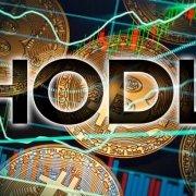 استراتژی سرمایه گذاری hodl در ارز دیجیتال