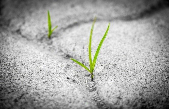 نجات بیت کوین در رکود اقتصادی