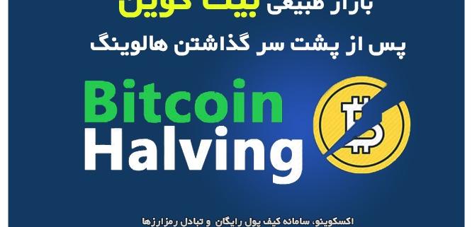 بازار طبیعی بیت کوین پس از پشت سر گذاشتن هالوینگ!